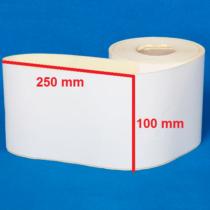 لیبل کاغذی 250 × 100